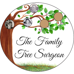 The Family Tree Surgeon New Port Richey | Bayonet Point Florida